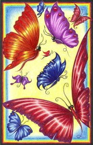 A lovely image of beautifully colored butterflies with a multicolored border.